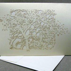 Beijing Spring - Invitation Sleeve Grande