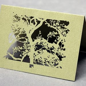 Beijing Spring (set of 10) - Place Cards